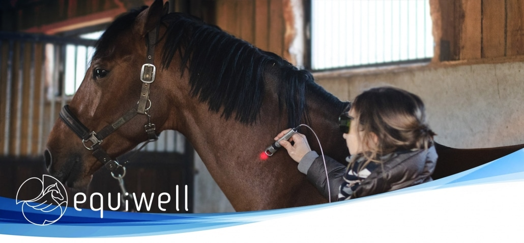 Traitements Equins Clinique Veterinaire Equiwell