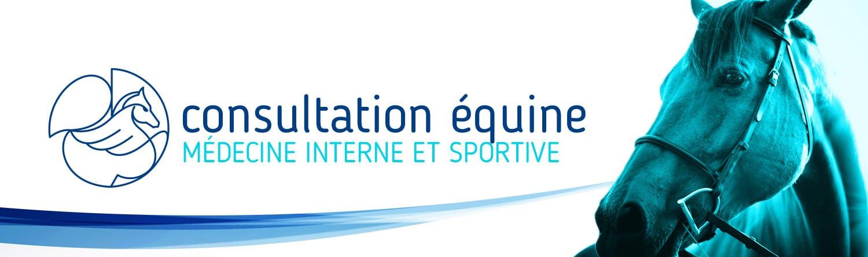 Consultation Equine Medecine Interne Et Sportive