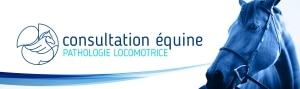 Consultation Pathologie Locomotrice Equine