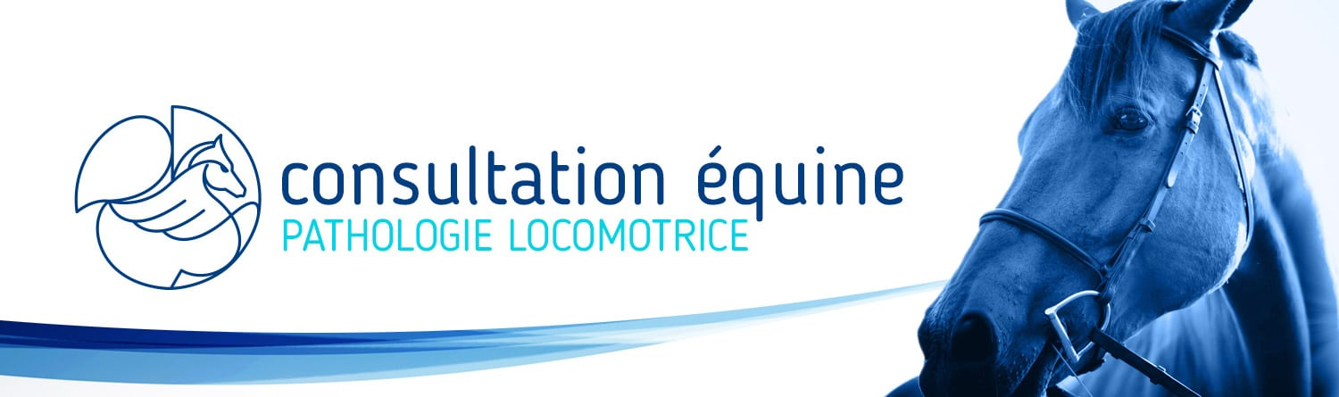 Consultation Pathologie Locomotrice Equine